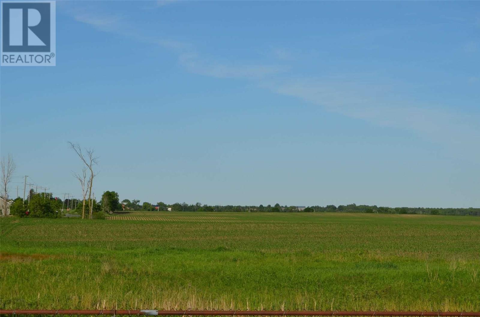 258 Highway 36, Kawartha Lakes, Ontario  K9V 4R4 - Photo 16 - X4620249