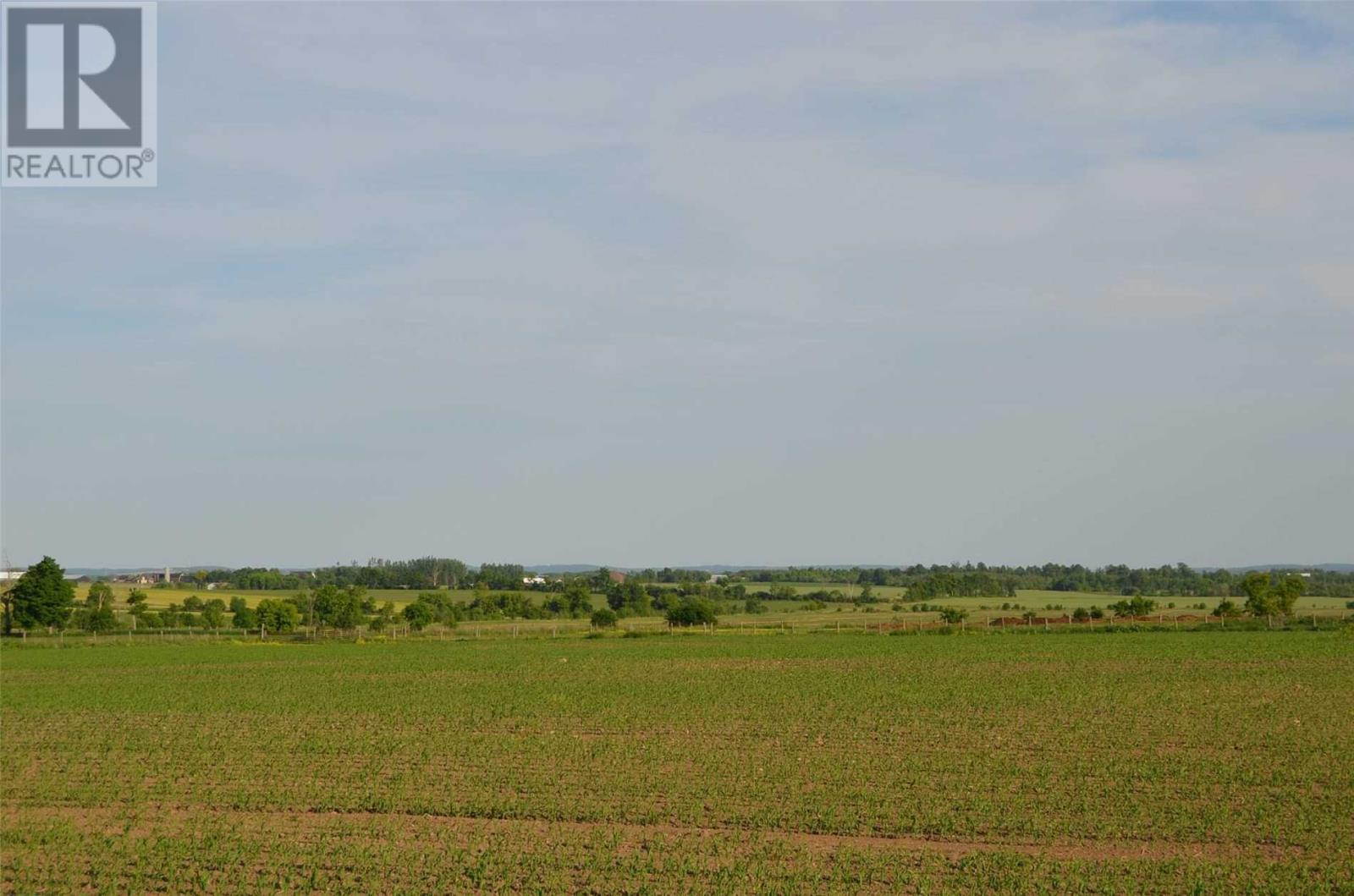258 Highway 36, Kawartha Lakes, Ontario  K9V 4R4 - Photo 17 - X4620249
